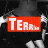 Terrier_Punk_Garage